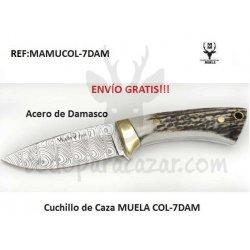 MUELA COL-7DAM