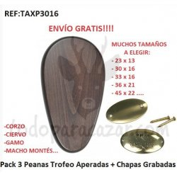 Pack 3 ud Peana para Trofeo + Chapas Grabadas